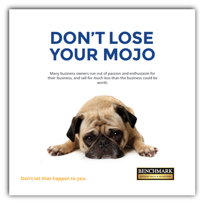Benchmark Business Sales and Valuations Free E-Book Cover Don't Lose Your Mojo with Pug