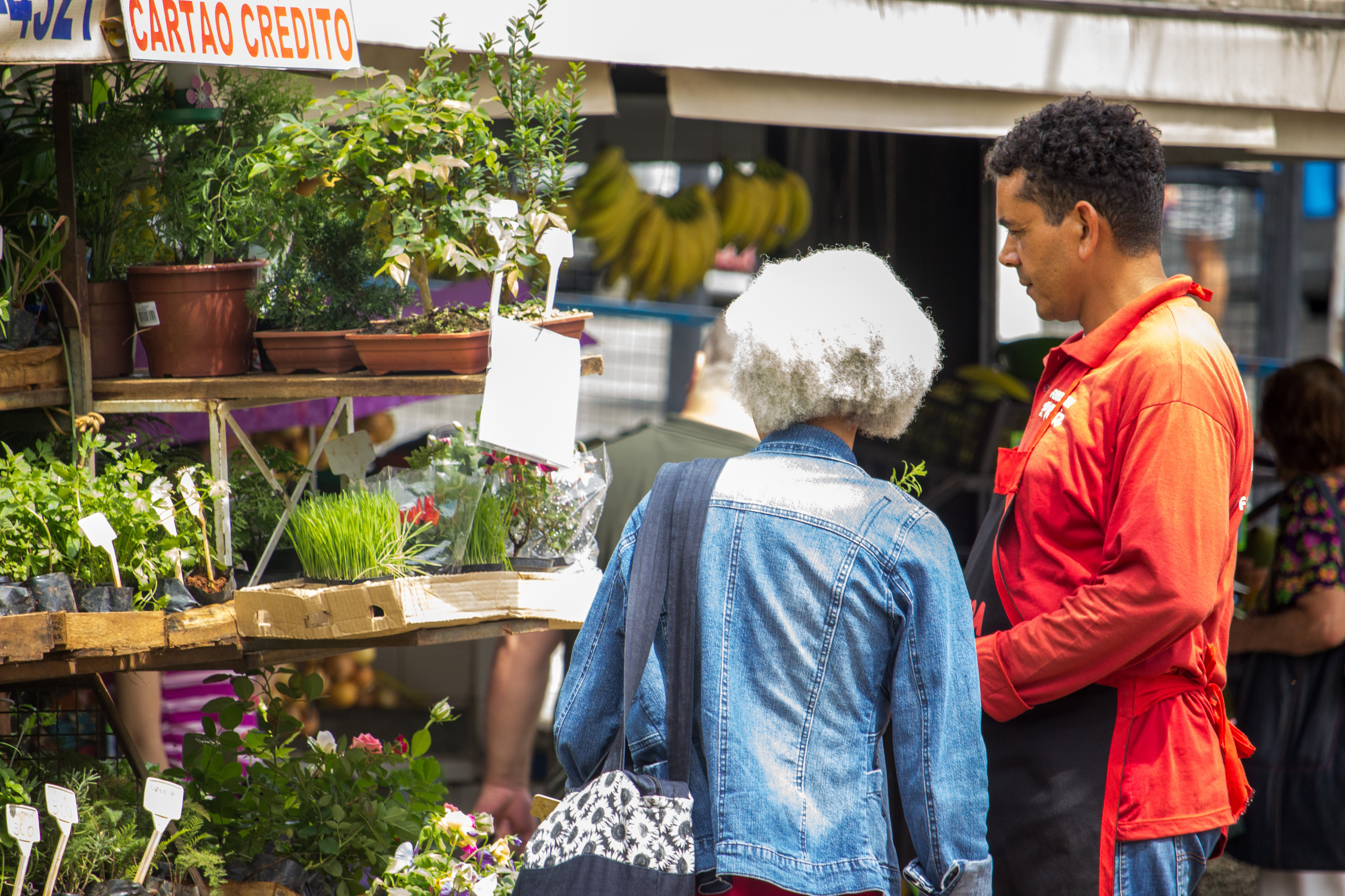 Business for sale in spring
